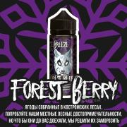 Жидкость FREEZE BREEZE 120 мл Forest Berry (Ягоды собранные в Костромских лесах ) 0 мг/мл